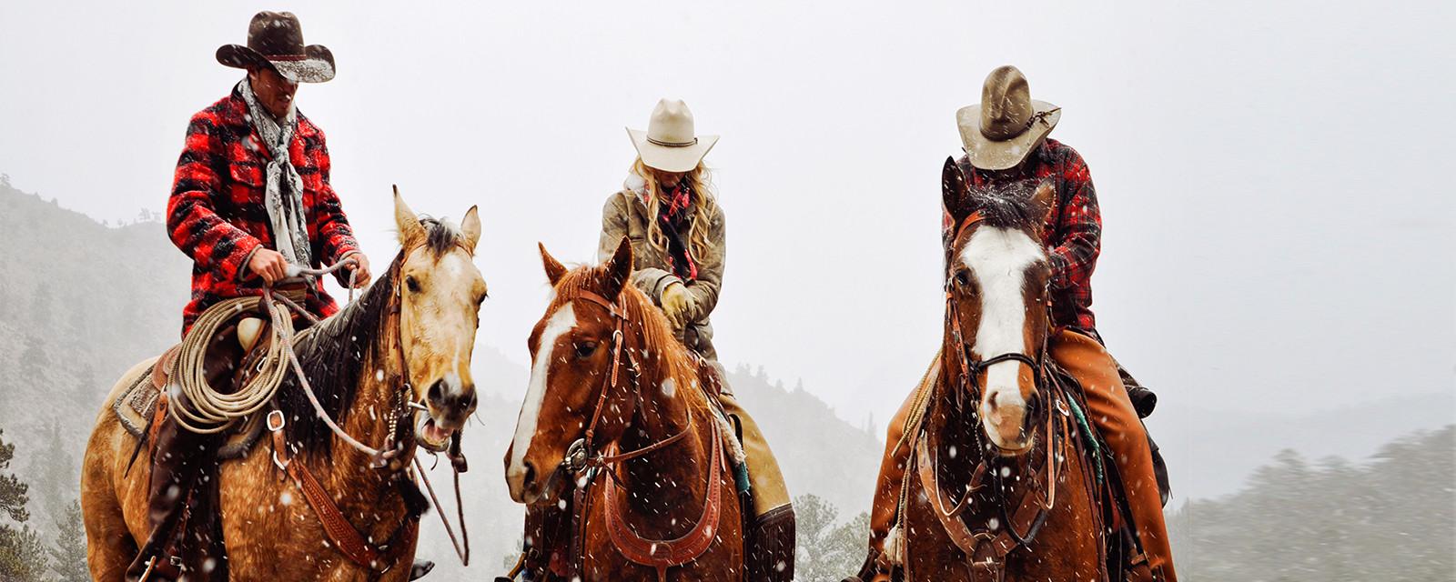 Reit- und Westernartikel